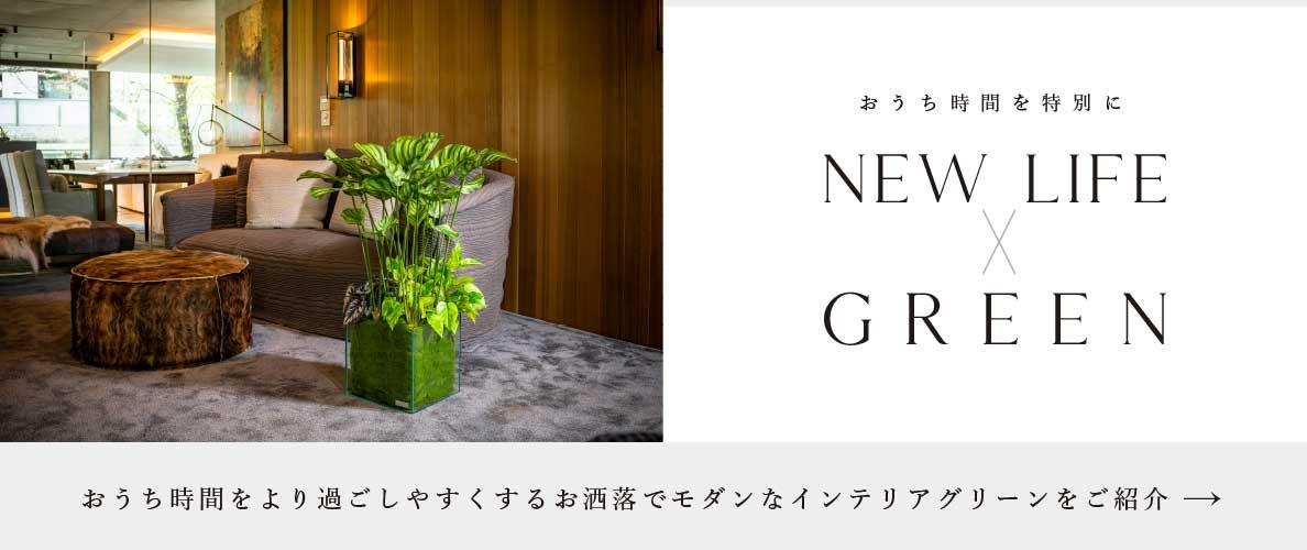 NEW LIFE×GREEN|グリーン特集